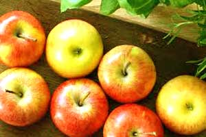 Apple Fruit Vitamin